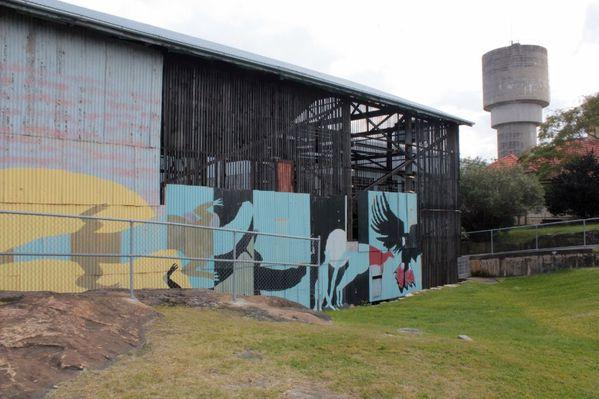 Aussie-oie-mai-2012-4 0564 (800x533)