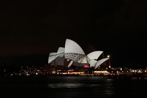 Aussie-oie-mai-2012-5 1084 (800x533)