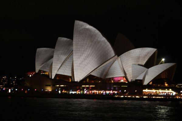 Aussie-oie-mai-2012-5 1114 (800x533)