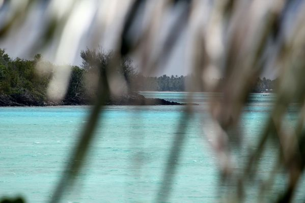 Polynesie-2011-2 7093 (800x533)