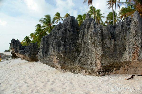 Polynesie-2011-2 7442 (800x533)