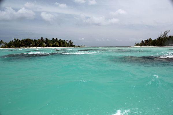 Polynesie-2011-2 7482 (800x533)