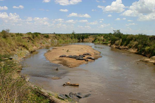 Maasai Mara3