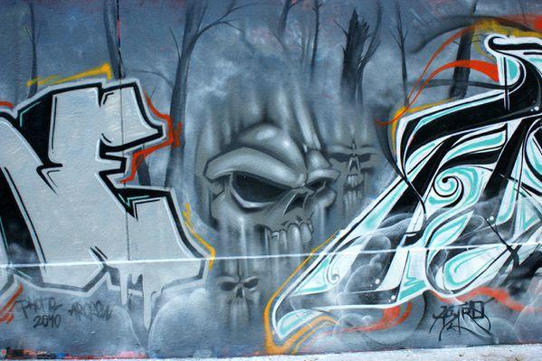 1827 rue des pyrenees 75020 01 novembre 2010
