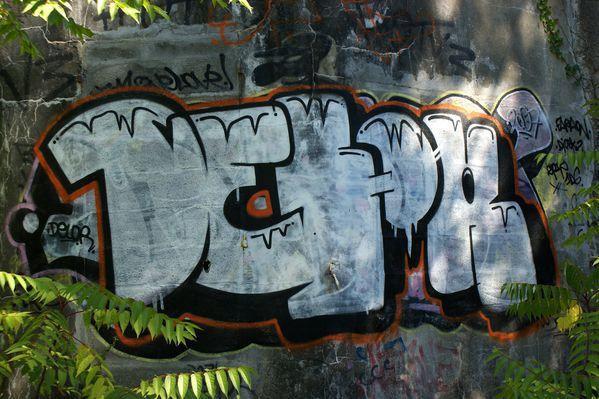 013 graffitis blockhaus la pointe de la coubre 2010