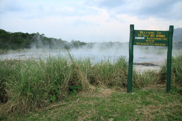 Nyasimbe springs - wordpress