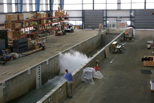 tsunami-NSF.jpg
