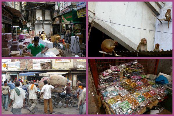 Inde KulluValley Chandigarh Delhi Agra7