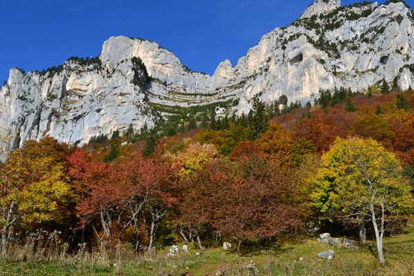 2012-10-21-chartreuse-seuil-delaup 0814