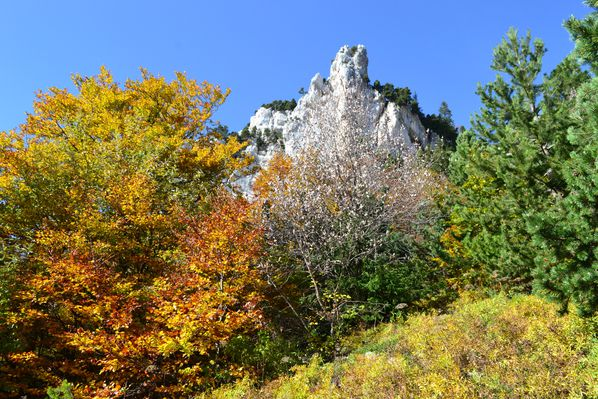 2012-10-21-chartreuse-seuil-delaup 0815