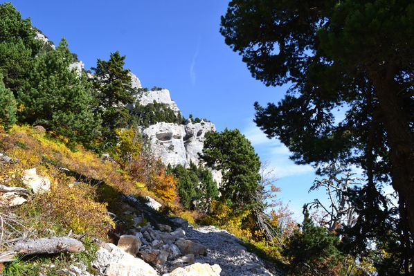 2012-10-21-chartreuse-seuil-delaup 0825