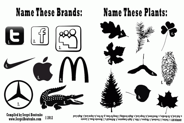 Name-these-Brands_WOO-1024x682.png