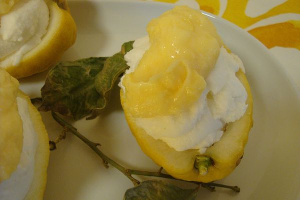 000 CITRONS GIVRES CURD (5)