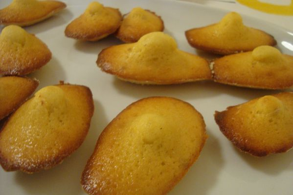 0000 madeleines aux baies roses (2)