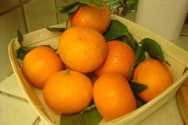 000 salade mandarines (1)