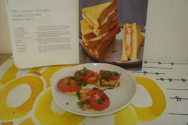 000 mini croque tomate brebis (1)
