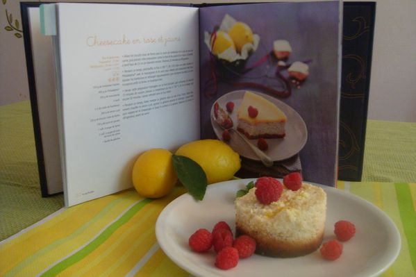 00000cheese cakes citron solar (22)