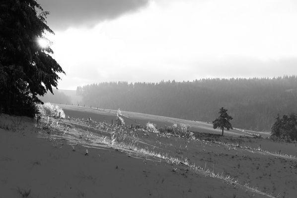 neige-1er-decembre-2012 7633