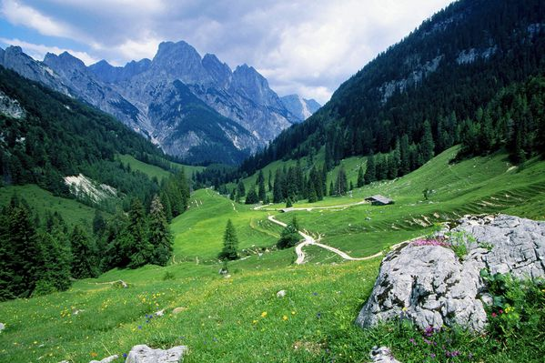 paysage-nature-montagne-hd-other.jpg