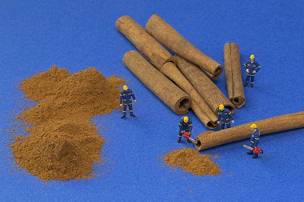 cinnamon-lumberjacks-640px.jpg