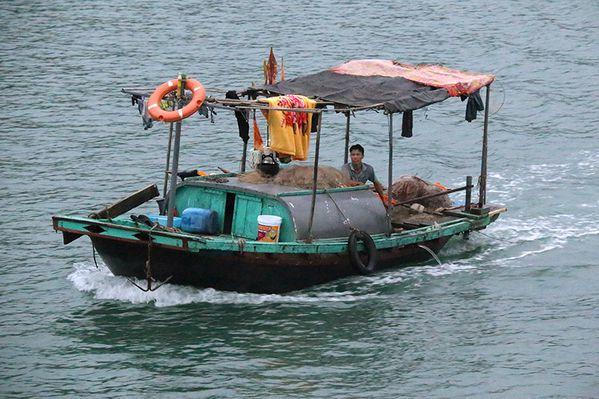 Vietnam__1904w.jpg