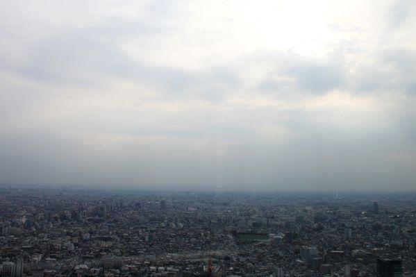 Shibuya_6.jpg