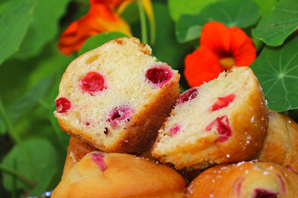 muffins-canneberges-4w.jpg
