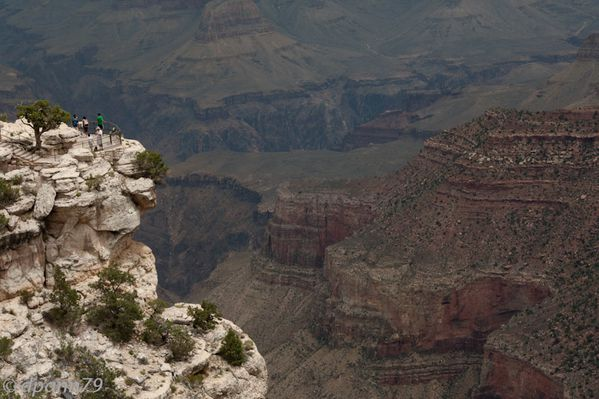 Grand Canyon (13 sur 17)