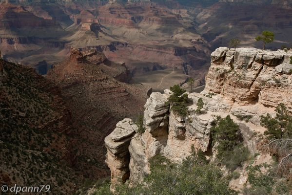 Grand Canyon (17 sur 17)
