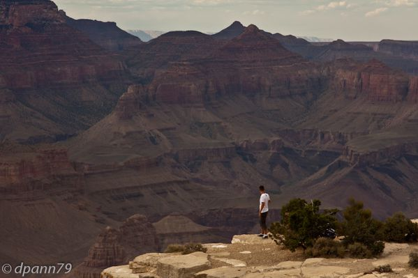Grand Canyon (7 sur 17)