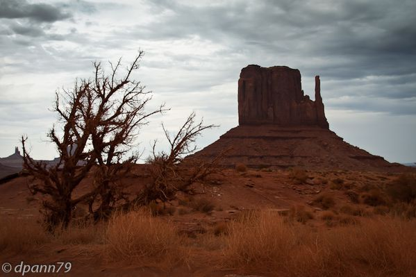 Monument Valley 2 (8 sur 18)