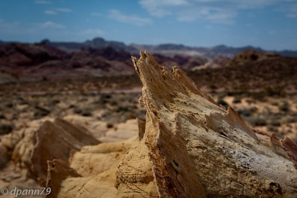 Valley of Fire (15 sur 21)