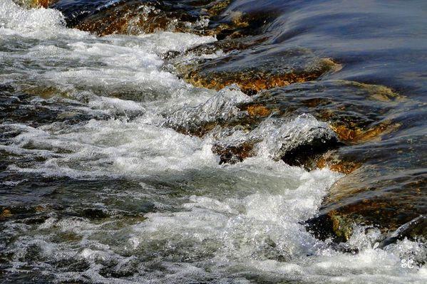 au fil de l'eau-02