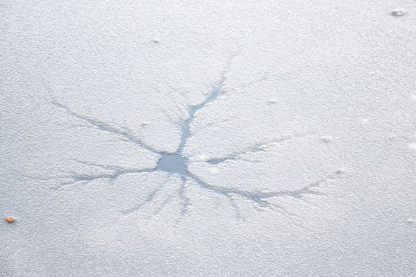 araignée de glace sur la rivière gelée