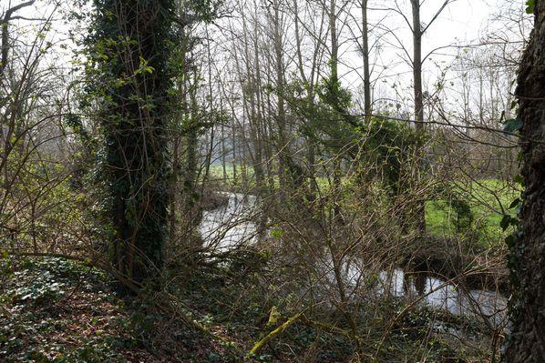 Moulin-Blanchardeau-4.jpg