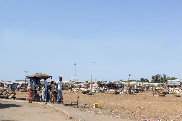 Senegal-2010---De-Dakar-a-Thies-12.jpg