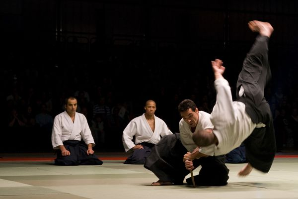 NAMT07 0014 Aikido