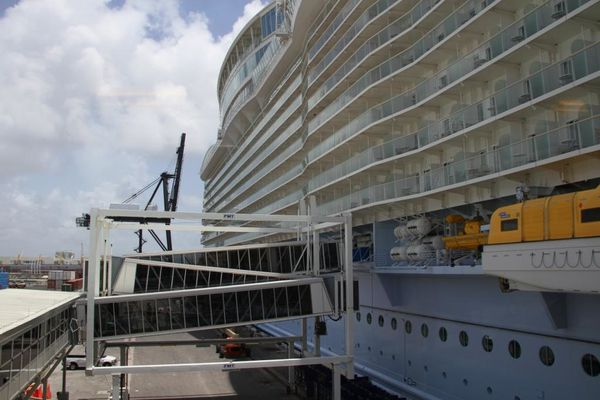 OASIS-of-the-SEAS 4201