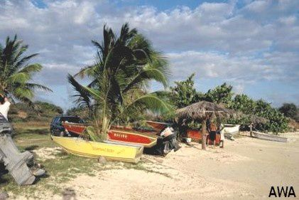 --st-vincent-and-the-grenadines--grenadines--id=42055