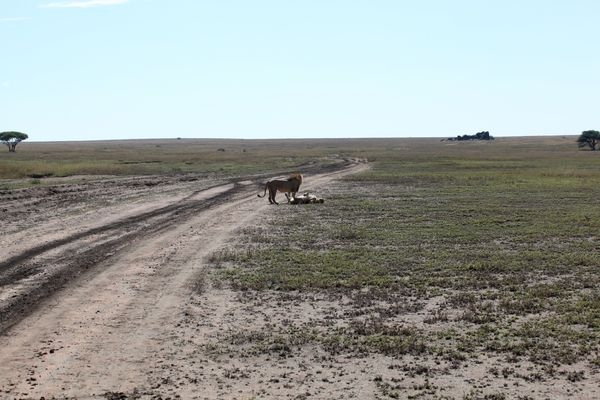 2011-2012-REUNION--AFRIQUE-3504.jpg