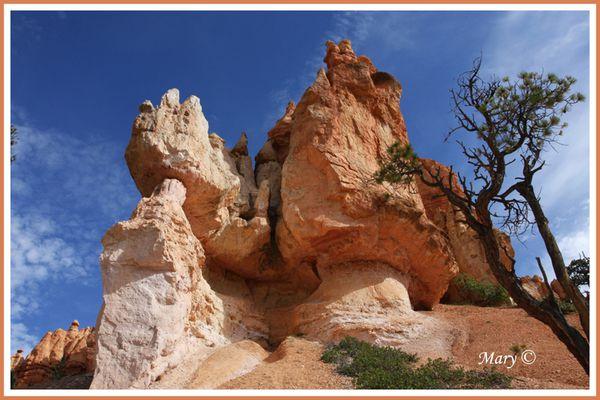 une autre vue de Bryce Canyon d'en bas copier