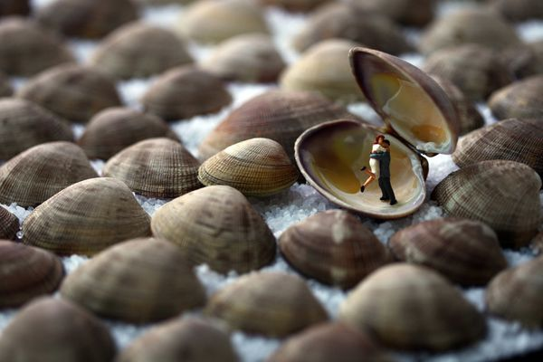 clamshell-lovers-24x36-300dpi.jpg