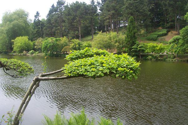 puy-du-fou-et-jardin-japonais-106.jpg