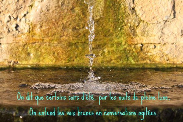 Fontaine 6