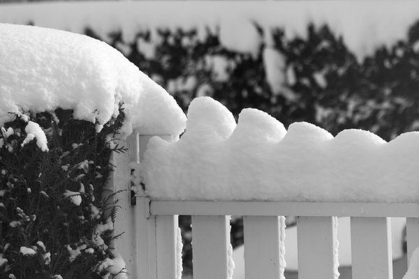 la-nature-et-l-hiver-9114.JPG