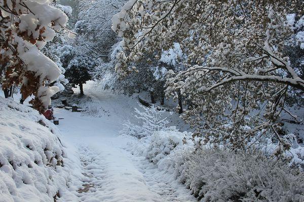 neige----enfants-24.02.13-compact--052--Copier-.jpg