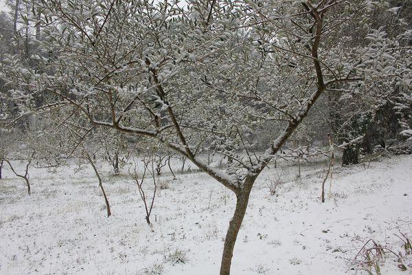 neige-encore-23.02.13-020--Copier-.jpg