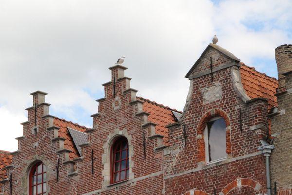 Bruges-5755.JPG