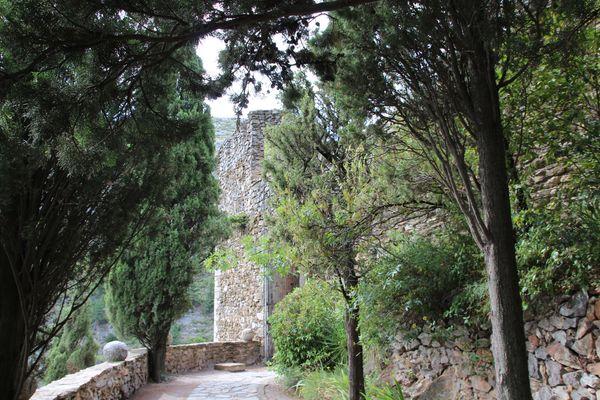 Pyrenees-orientales-3048.jpg
