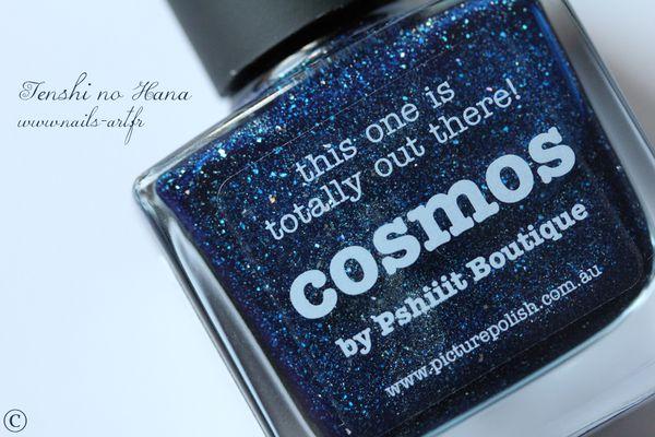 cosmos 01b